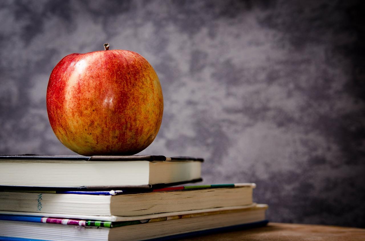 Scuola: la riforma necessaria dietro la battaglia dei compiti