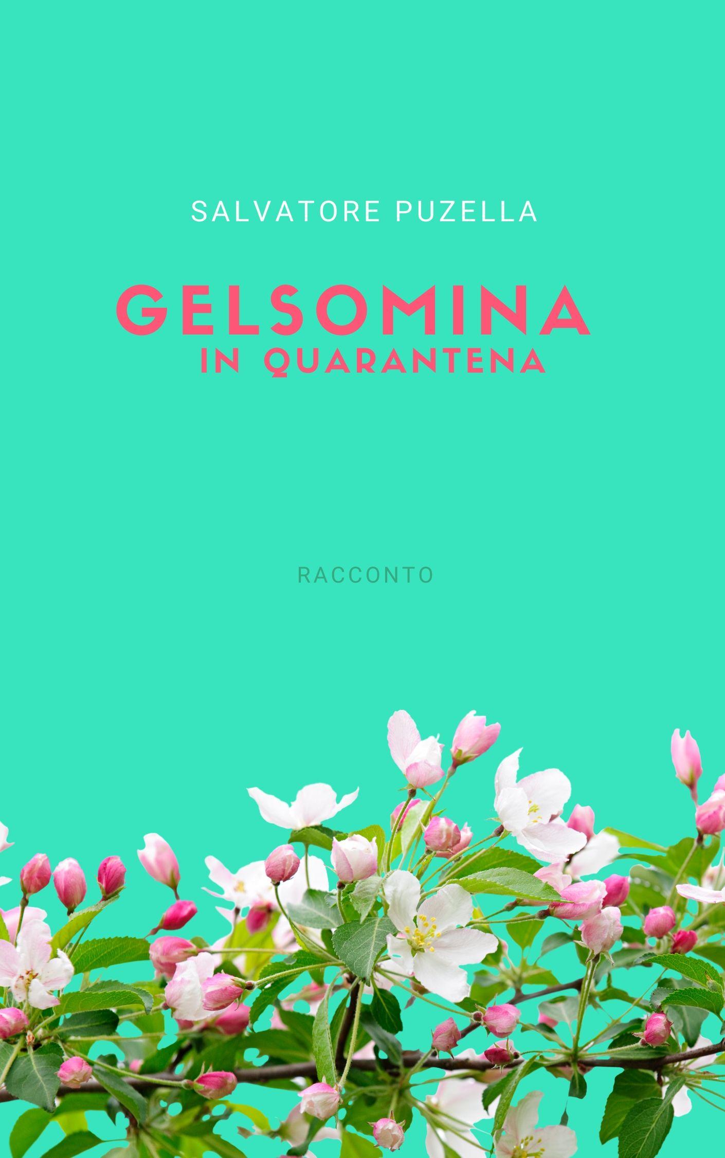 'Gelsomina in quarantena' di Salvatore Puzella, un racconto per aiutare le strutture sanitarie del Sannio