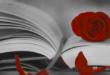 Giornata mondiale del libro: origine, leggende e festeggiamenti